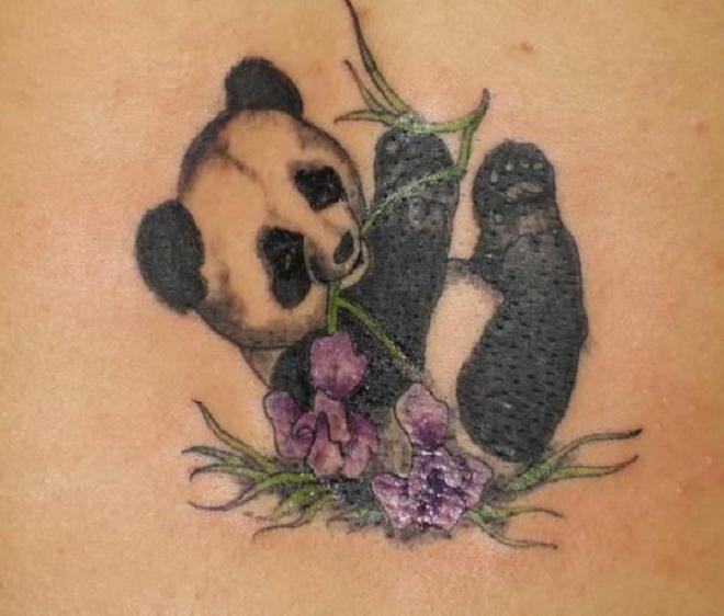Panda Bear Tattoo Pics
