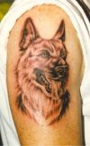 dog image of tattoo