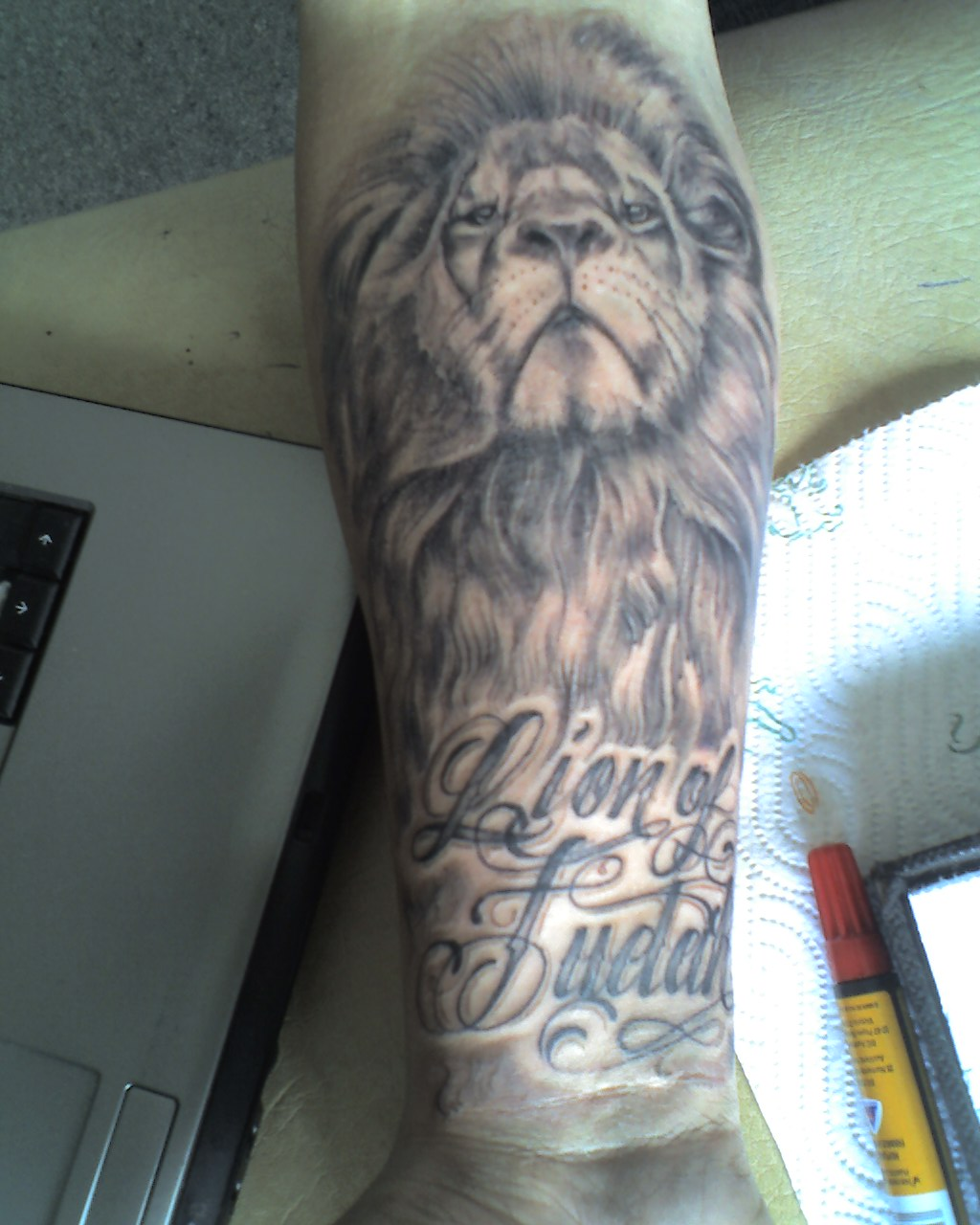 Lion Head And Text Tattoos