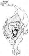 free lion tattoos pic
