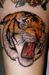 tiger head tattoos pic