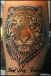 tiger head tattoo pics