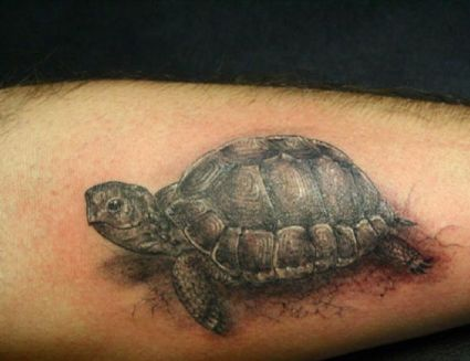 Turtle Tattoo Image