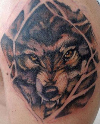 Wolf Face Tattoos