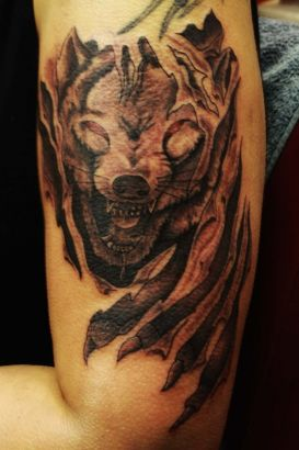 Wolf Images Tattoo On Arm