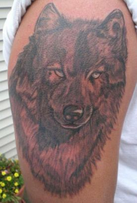 Wolf Pic Of Tattoo On Arm