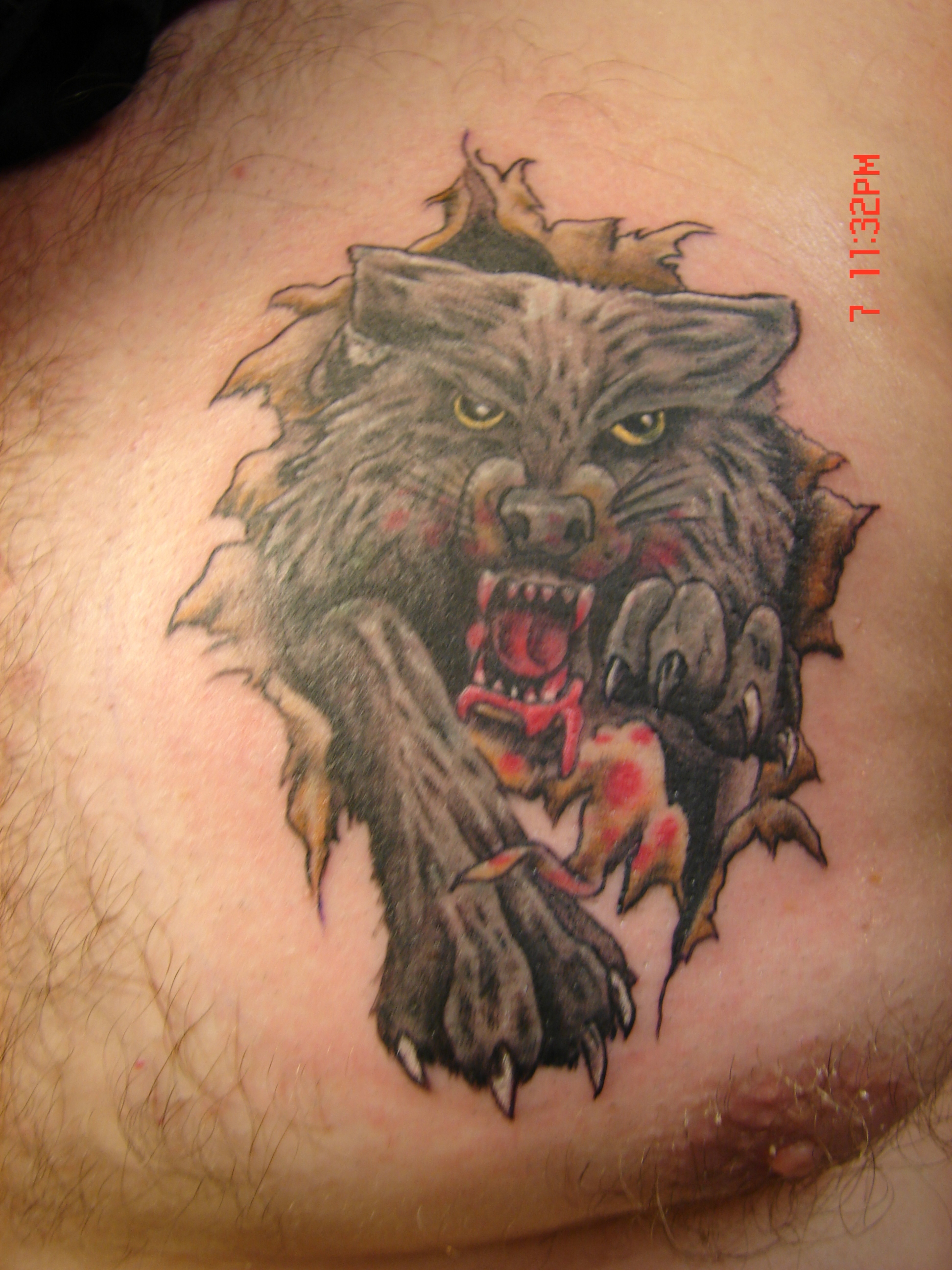 Small Dragon Chest Tattoo Tattoo Design Contest