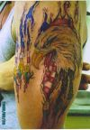 eagle head pic left arm tattoo