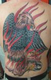 Eagle tattoos on back