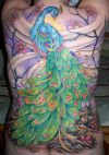 peacock tattoo on full back