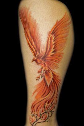 phoenix pics tat on leg tattoo from itattooz. Black Bedroom Furniture Sets. Home Design Ideas