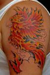phoenix pic of tattoo on arm