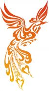 tribal phoenix pic tattoo