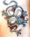 asian dragon images tats