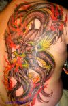 dragon pic tattoo on side back