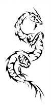 dragon pics free tattoos