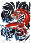 dragon tats design