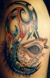 shark tattoo for man