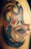 shark tattoo for man