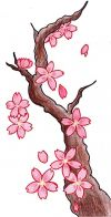 free cherry blossom tree tattoo