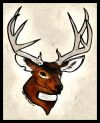 free deer head tattoo