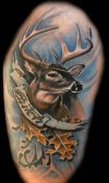 deer tattoo pictures