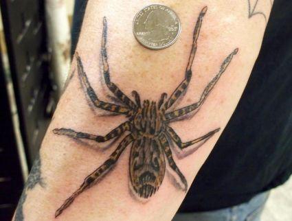 3d Spider Tattoo Pics Tattoo From Itattooz