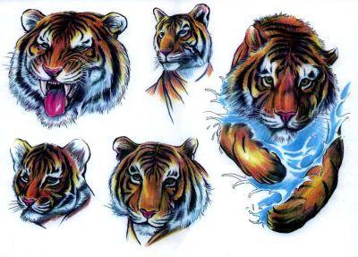 Animal tattoos, Lion tattoos, Tattoos of Animal, Tattoos of Lion, Animal tats, Lion tats, Animal free tattoo designs, Lion free tattoo designs, Animal tattoos picture, Lion tattoos picture, Animal pictures tattoos, Lion pictures tattoos, Animal free tattoos, Lion free tattoos, Animal tattoo, Lion tattoo, Animal tattoos idea, Lion tattoos idea, Animal tattoo ideas, Lion tattoo ideas, lion head tats design