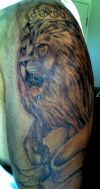 lion head pictures tattoos