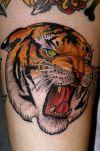 tiger head tattoos pic