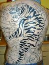 large tiger tattoo on back