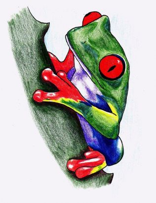 Tree Frog Tattoo Image