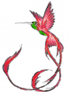 hummingbird free image tattoo