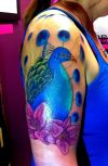 peacock color