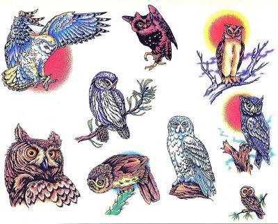 Birds tattoos, others tattoos, Tattoos of Birds, Tattoos of others, Birds tats, others tats, Birds free tattoo designs, others free tattoo designs, Birds tattoos picture, others tattoos picture, Birds pictures tattoos, others pictures tattoos, Birds free tattoos, others free tattoos, Birds tattoo, others tattoo, Birds tattoos idea, others tattoos idea, Birds tattoo ideas, others tattoo ideas, owls tattoos