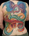 phoenix fight with dragon image tattoo on back