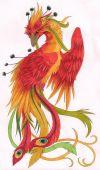 phoenix free pic tattoo