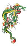 chinese green dragon pic tattoo