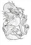 dragon free pics of tattoo