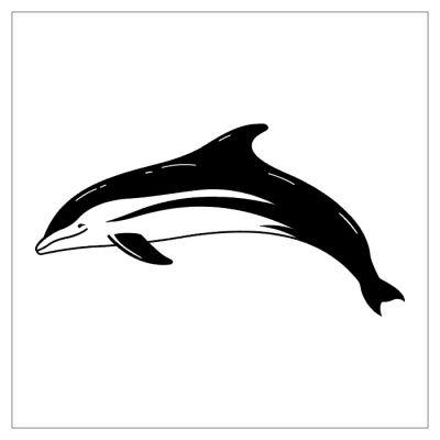 Fish tattoos, Dolphin tattoos, Tattoos of Fish, Tattoos of Dolphin, Fish tats, Dolphin tats, Fish free tattoo designs, Dolphin free tattoo designs, Fish tattoos picture, Dolphin tattoos picture, Fish pictures tattoos, Dolphin pictures tattoos, Fish free tattoos, Dolphin free tattoos, Fish tattoo, Dolphin tattoo, Fish tattoos idea, Dolphin tattoos idea, Fish tattoo ideas, Dolphin tattoo ideas, dolphin tattoo in black